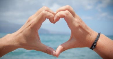 Valentines Day Coursera Courses and Specializations